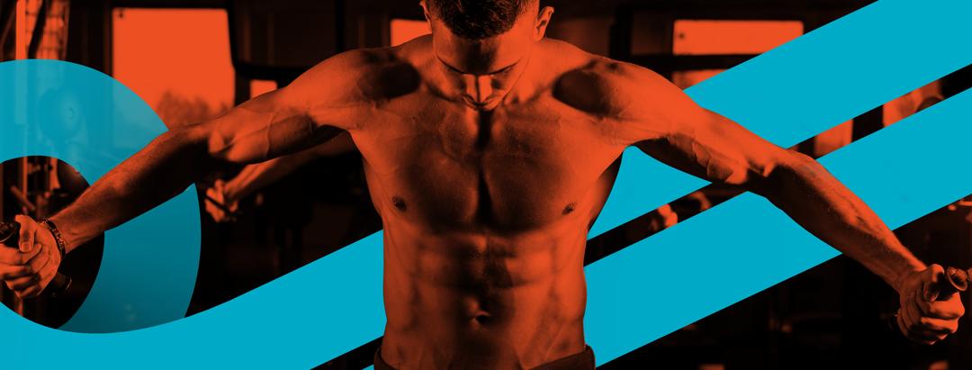 fitness untuk bulking